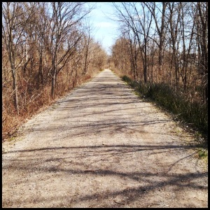 The Clinton River Trail - one of the great trails in metro Detroit.