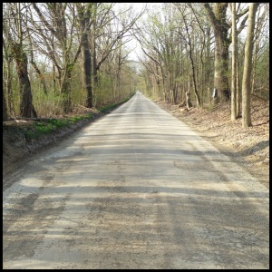 I love running back roads. They're usually very peaceful, and they help me mentally prepare for races.