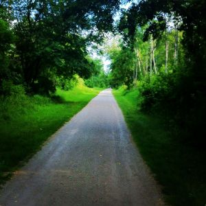 A nice view on one of my many trail runs during July.